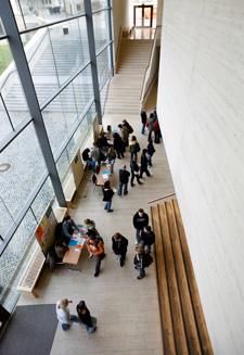 Online Dissertation Uni Halle